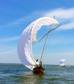 sailing boat sea 2.jpg